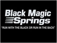 Black Magic Springs